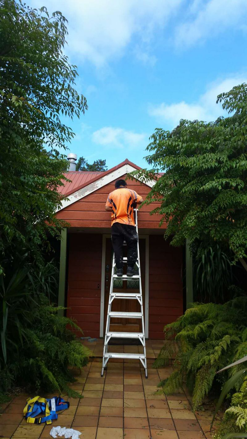 Botany Downs House Exterior Painting House Painters East