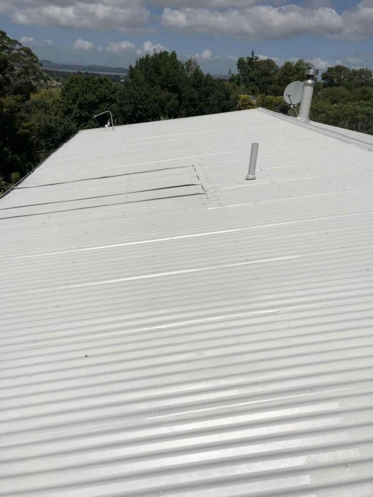 Epsom Roof Painting House Painters East Auckland